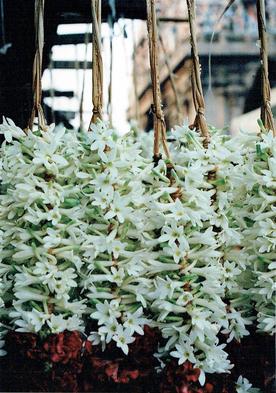 NUM-flowers