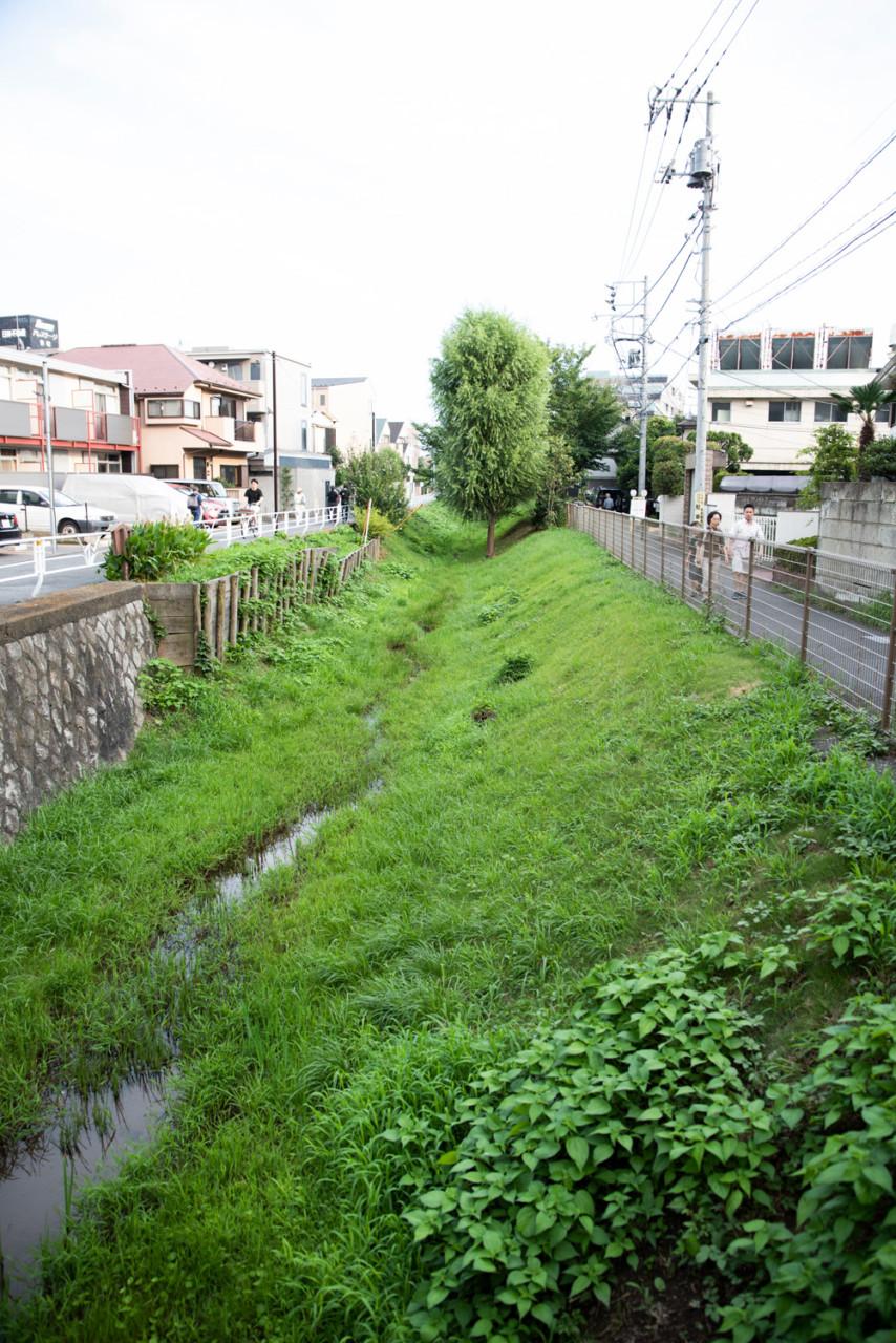 ogawa-hiki_num-3600